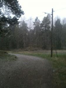Såhär ymnigt snöade det i tisdags när jag sprang 1,5 km