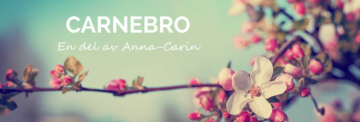 Carnebro – En del av Anna-Carin